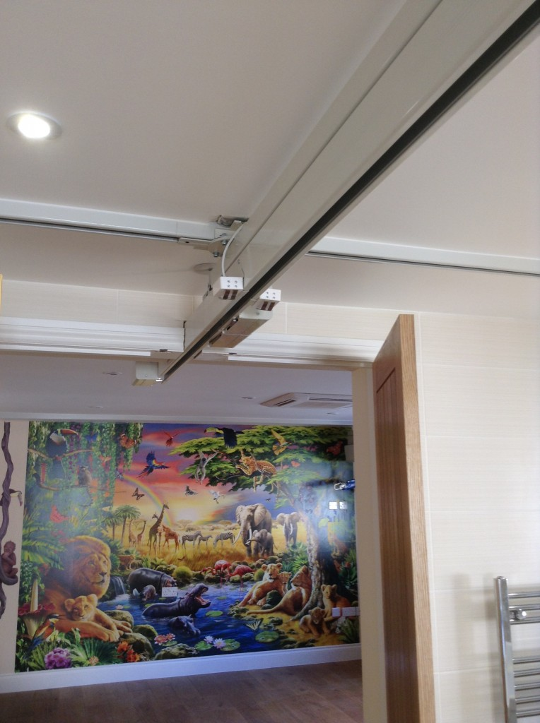 Ceiling Hoist Multi Room Access Opemed