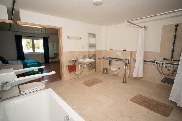assisted bathroom for flat spaces