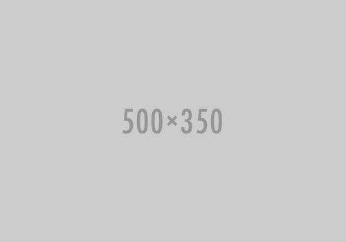 Character Template 500-350-placeholder
